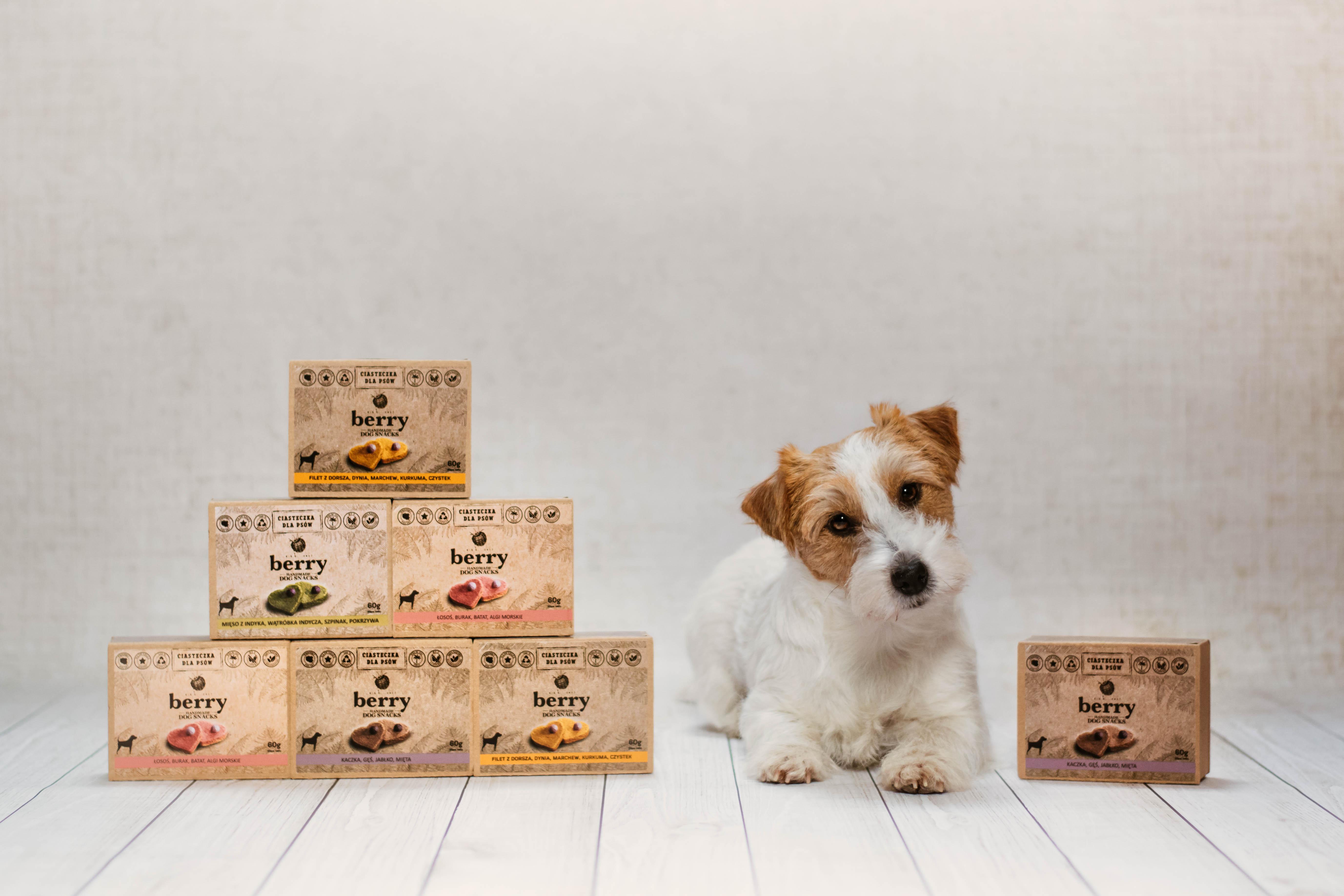 Produkty dla psów