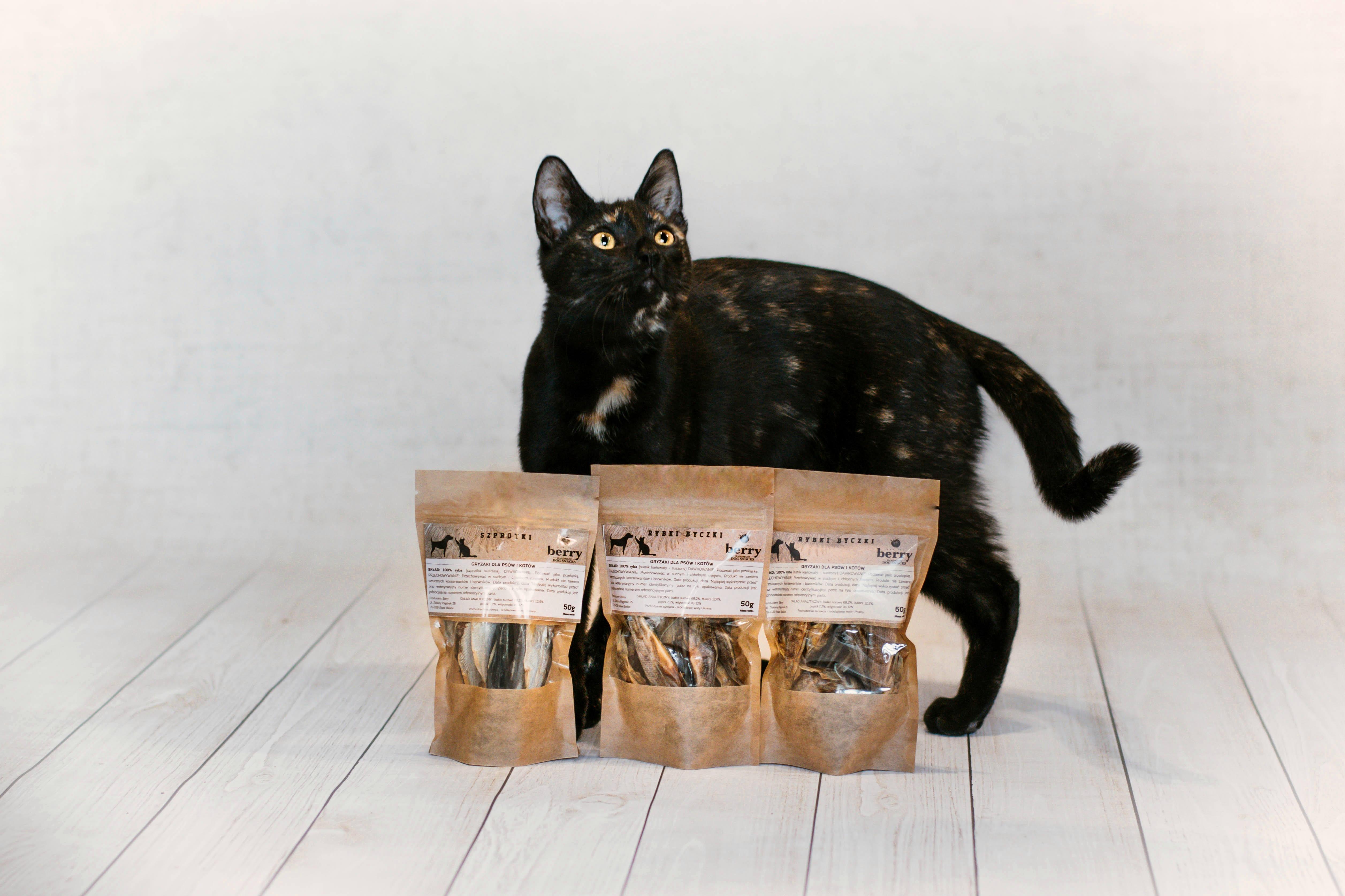Produkty dla kotów